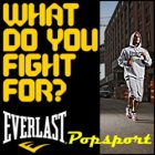 Everlast-google-250x250-1.jpg